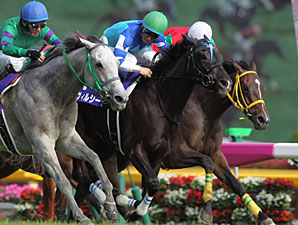 Verxina Lands Elusive Group I Win in Japan