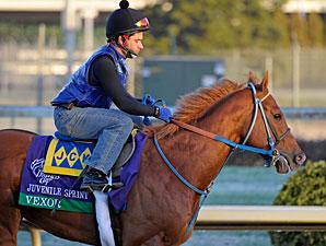 Vexor, Churchill Downs, Nov. 1, 2011.
