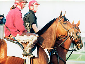 Victory Gallop in Canadian Hall of Fame