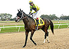 Haskin: Puckish Pletcher Pair