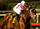 Unbeaten Violence Wins CashCall Futurity