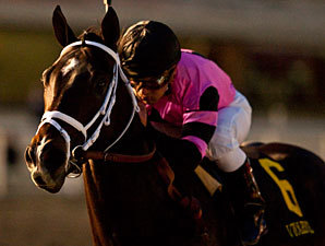 Unbeaten Violence Set for Fountain of Youth