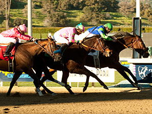 Vision in Gold wins the 2011 Santa Maria