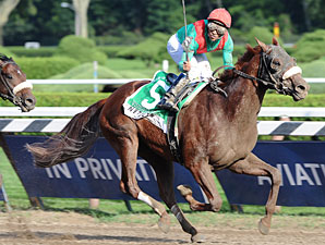 Visionaire Won't Point for Breeders' Cup