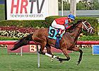 Viva Rafaela Makes U.S. Stakes Debut