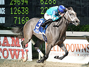 Vivian Da Bling wins the 2014 My Trusty Cat Stakes.