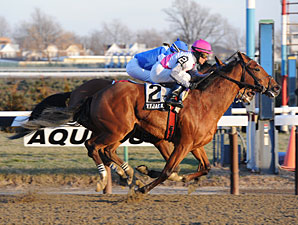 Vyjack wins the 2013 Jerome.