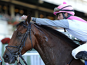 Vyjack wins the 2014 Kelso Stakes.