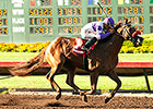 Wake Up Nick Wins Again in Barretts Juvenile