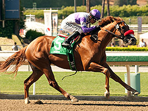 Wake Up Nick wins the Santa Anita Juvenile Stakes.