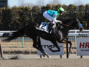 Wall Street Wonder wins the 2010 Paumonok Stakes.