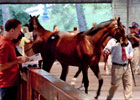 Keeneland September Sale: Walt Robertson