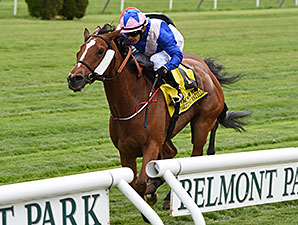 Waltzing Matilda Stuns Field In New York Video Replay