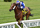 Waltzing Matilda Stuns Field in New York
