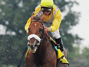 Wanderin Boy Tops Balanced Cigar Mile