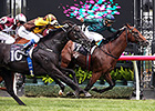 Wandjina Just Holds On in Australian Guineas