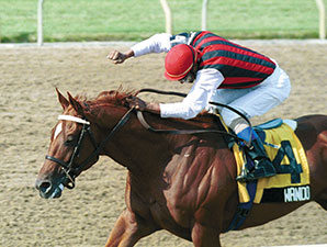 Wando, 2003 Canadian Horse of the Year, Dies