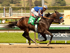 War Academy Ready for Big Test, Baffert Says