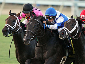 War Dancer Gets Bob in Virginia Derby Photo