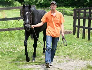 War Emblem Filly Scores Big in Japan