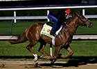 Final Kentucky Derby Work for War Story