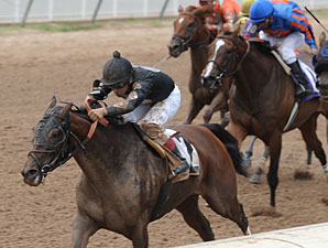Warrior Maid wins the 2012 Louisiana Cup Filly & Mare Sprint.