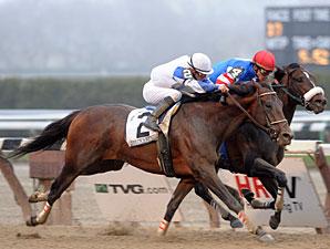 Warrior's Reward wins the 2010 Carter.