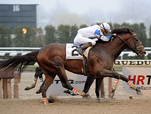 Strong Crew Takes on Churchill Downs Stakes