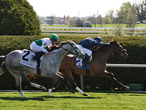 Wasted Tears wins the 2010 Jenny Wiley.