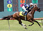 Wasted Tears Wins Third Straight Ouija Board