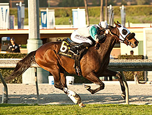 Weewinnin wins the 2014 California Cup Turf Classic.