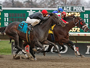 Well Positioned wins the 2010 Frisk Me Now Stakes.