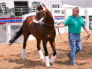 Went the Day Well - Pimlico May 16, 2012.