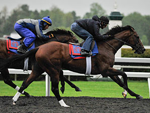 Went the Day Well - Keeneland Work, April 21, 2012.