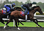 Went The Day Well Breezes at Rainy Keeneland