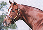 Werblin Sires First Winner 