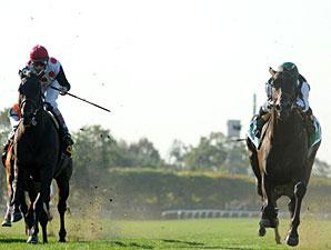 Western Aristocrat wins the 2011 Jamaica.