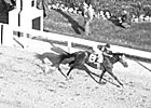 Triple Crown Heroes: Whirlaway