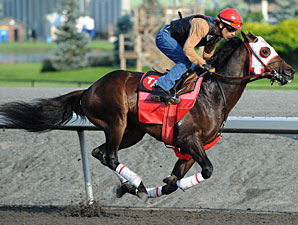 Who We Gunna Call at Woodbine on June 29, 2010.