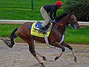 Wicked Strong jogs at Churchill Downs April 28.