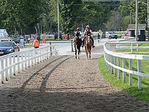 Wicked Strong - Saratoga, August 16, 2014.