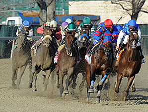 Wicked Strong wins the 2014 Wood Memorial.