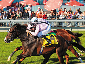 Wigmore Hall Adds to High Chaparral's Success