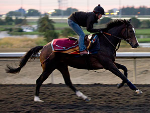 Wigmore Hall - Woodbine, October 9, 2012.