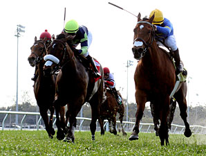 Wild About Marie wins the 2011 Bienville.