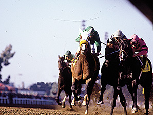 Wild Again, inside rail, running in the 1984 Breeders' Cup Classic.