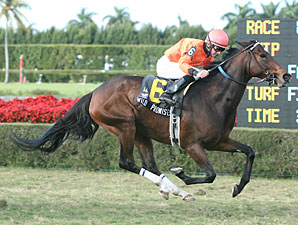 Wild Promises Wins Fifth Straight Stakes
