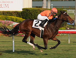 Wild Promises Wins Sixth Straight