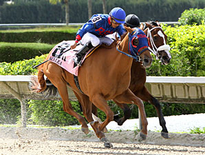 Wilcat Lily Edges Out a Win in Azalea Stakes