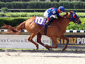 Wildcat Lily Enters Azalea Off Strong Victory